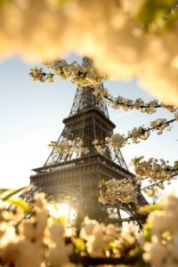 World First Travel Insurance - A Last Minute weekend in…. Paris