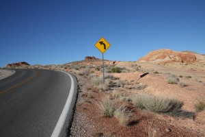 Valley of Fire - travel blog